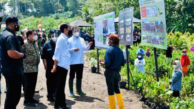 Tanam Mangrove Bersama Masyarakat, Presiden: Untuk Antisipasi dan Mitigasi Perubahan Iklim